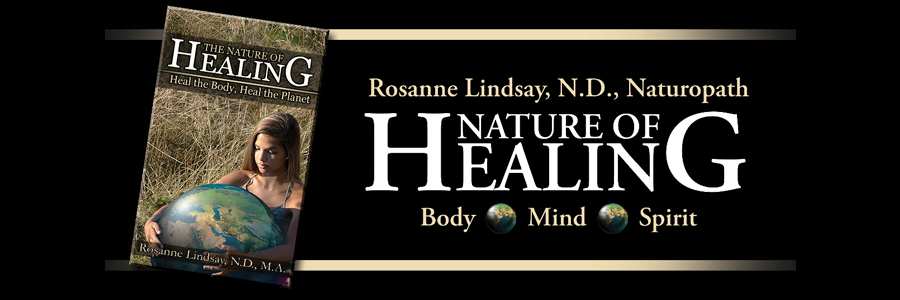 Nature of Healing by Rosanne Lindsey, ND